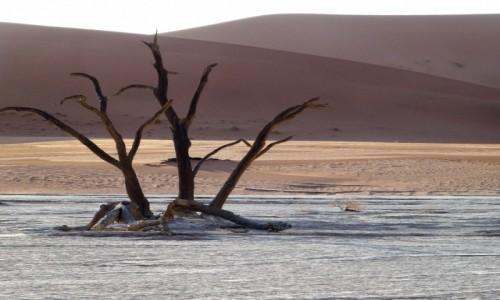 NAMIBIA / Park Narodowy Namib Naukluft / Sossusvlei / Słońce już bardzo nisko...