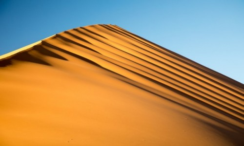 Zdjecie NAMIBIA / Park Narodowy Namib Naukluft / Wydma 45 / Namibia