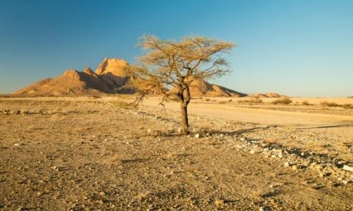 Zdjecie NAMIBIA / Namibia  / Spitzkoppe / Namibia