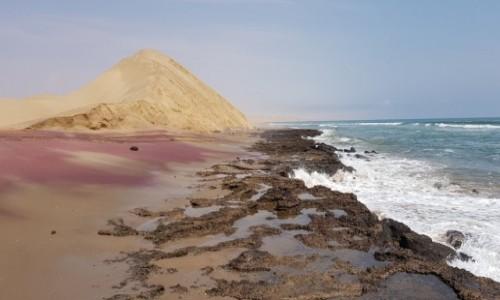 NAMIBIA / Zachodnia Namibia / Wybrzeże w okolicy Walvis Bay / Na wybrzeżu