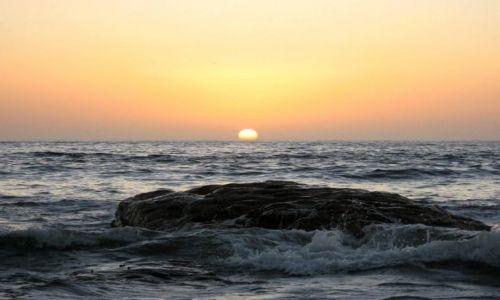 Zdjecie NAMIBIA / Swakopmund / plaża / morski potwór