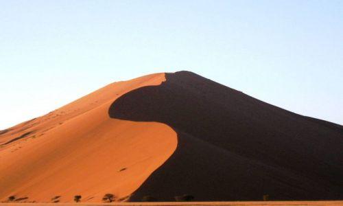 Zdjecie NAMIBIA / Pustynia Namibijska / Soususvlei / ikonka z pustyni