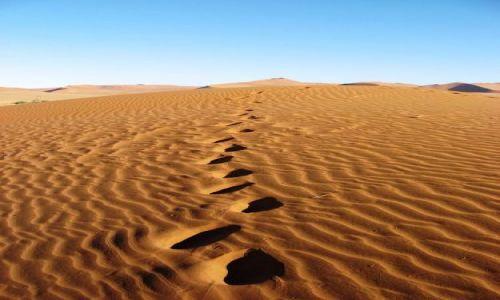Zdjecie NAMIBIA / Pustynia Namibijska / Soususvlei / tylko piach... suchy piach... suchy... suchy...