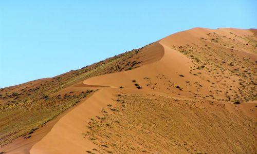 NAMIBIA / brak / Sossusvlei / wydmy