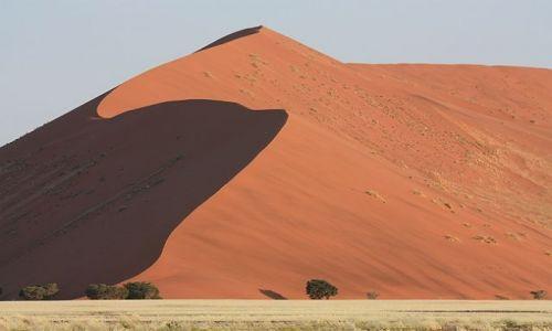 NAMIBIA / - / Sossusvlei / Sossusvlei