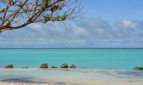 Zdjecie NAURU / Nauru / Anabar Beach / Czasem Ocean tak wygląda