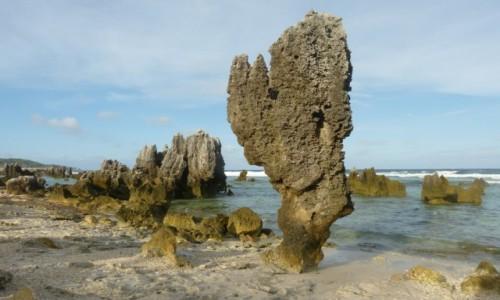 Zdjecie NAURU / Nauru / Anibare / Rafy