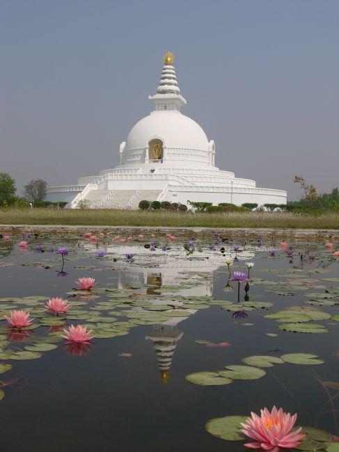 Lumbini Nepal  City new picture : Zdjęcia: Park, Lumbini, Pagoda światowego pokoju, NEPAL