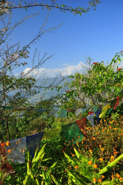 Zdjęcia: Pokhara, W dole Pokhara, NEPAL
