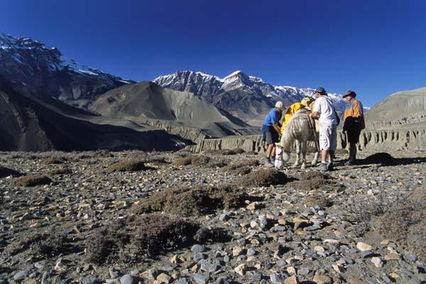 Zdj�cia: Szlak wok� Annapurny, Wsp�towarzysz trekingu, NEPAL