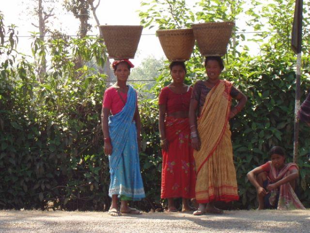 Zdjęcia:  na trasie do Katmandu, Cztery Gracje, NEPAL