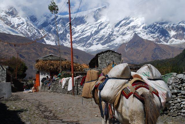 Zdjęcia: NEPAL, Annapurna TREK, Kolejna wioska, NEPAL