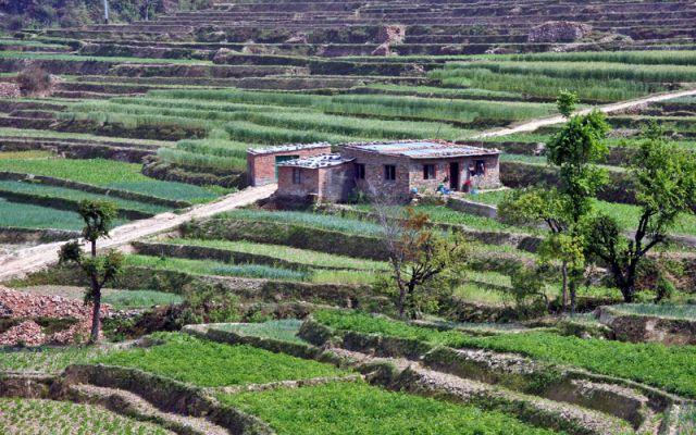 Zdjęcia: W drodze do Katmandu, Tarasy 2, NEPAL