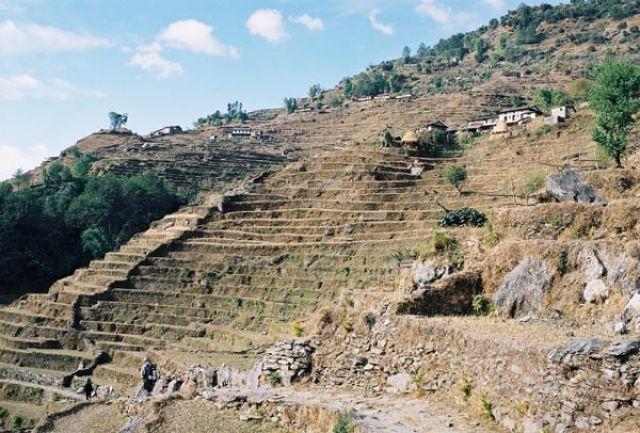 Zdjęcia: Szlak: Gandruk - Birethanti, -Masyw Annapurny, Pola uprawne, NEPAL