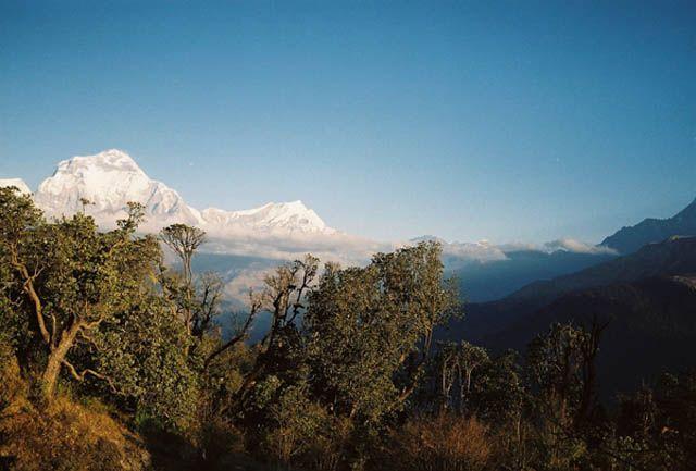 Zdjęcia: Widok z Poon Hill, -Masyw Annapurny, Dhaulagiri (8167 m. npm), NEPAL