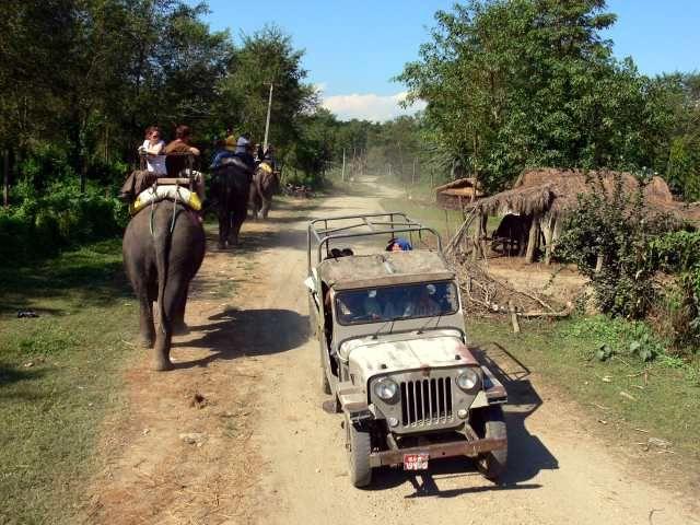 Zdjęcia: Chitwan, Himalaje, Rajd na słoniu, NEPAL