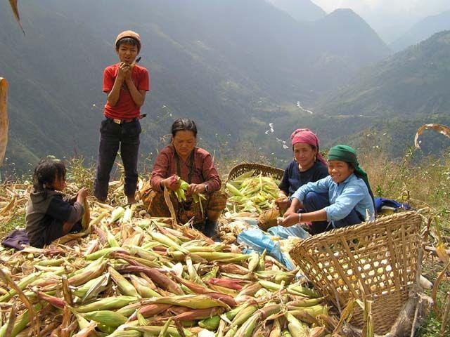 Zdjęcia: Okolice Teplejung, Nepal, Ludzie Nepalu, NEPAL