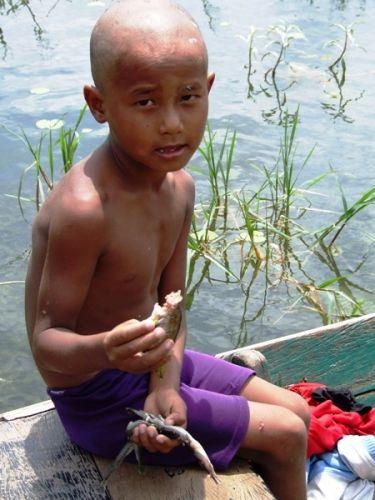 Zdjęcia: Pokhara, a może rybkę?, NEPAL