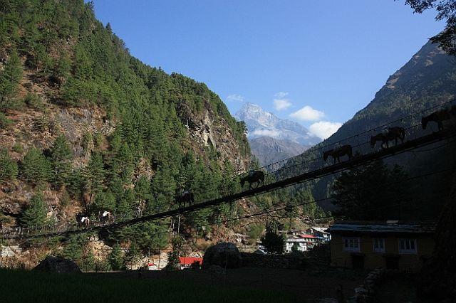 Zdjęcia: W drodze do Mount Everest Base Camp - okolice Jorsale, Wiszące osły, NEPAL