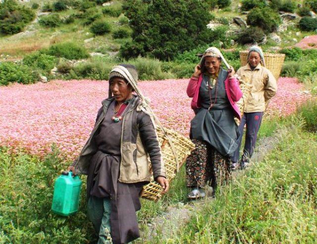 Zdj�cia: gdzies na szlaku.., usmiechniete tragarki:), NEPAL