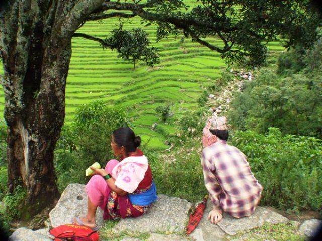 Zdjęcia: gdzies na szlaku.., odpoczynek w cieniu drzewa, NEPAL