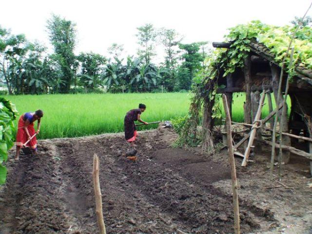 Zdjęcia: gdzies na szlaku.., praca w polu.., NEPAL