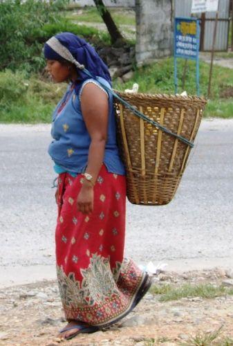 Zdjęcia: gdzies na szlaku.., z koszem, NEPAL