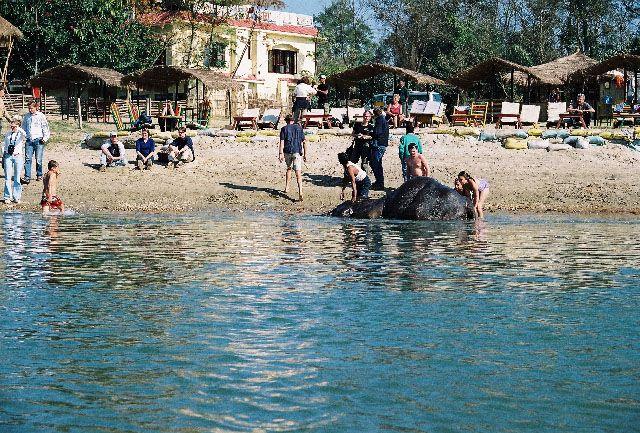Zdjęcia: Sauraha, Terai, południowa kąpiel, NEPAL