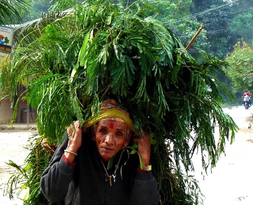 Zdjęcia: Nepal, staruszek, NEPAL