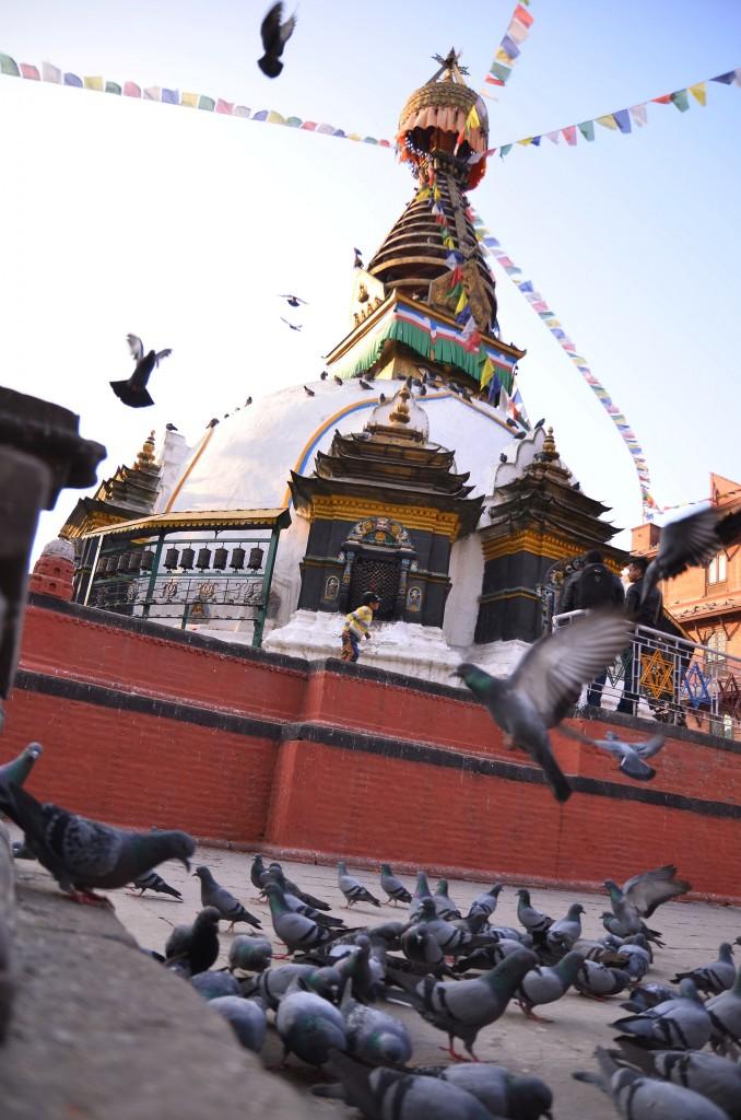 Zdjęcia: Pokhara, Centralny Nepal , Pokhara, NEPAL