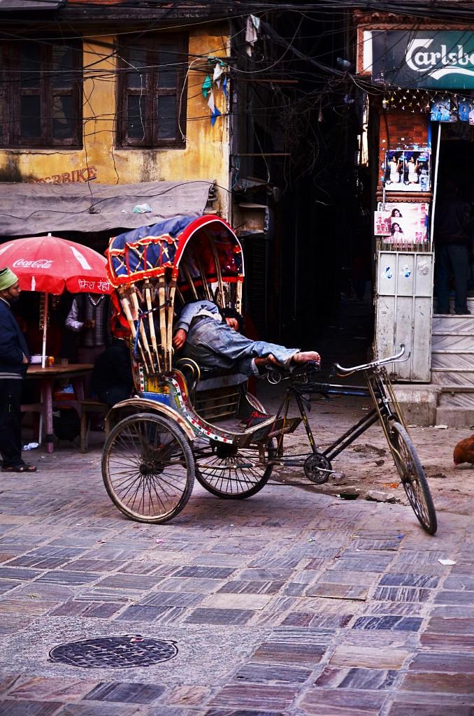 Zdjęcia: Okolica Pokhary, Centralny Nepal, Drzemka, NEPAL