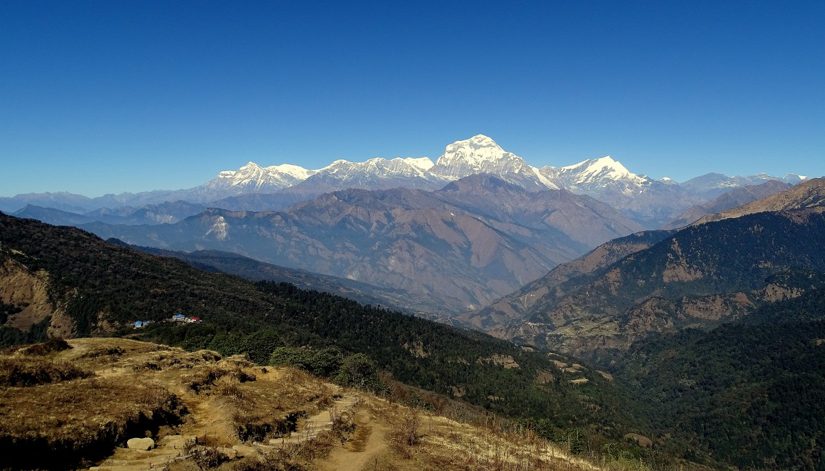 Zdjęcia: w drodze do Tadapani, Annapurna Circuit, Nagroda :), NEPAL
