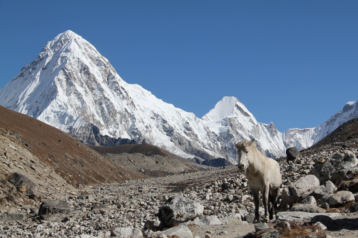Zdjęcia: Himalaje, Labuche, Pumori, NEPAL