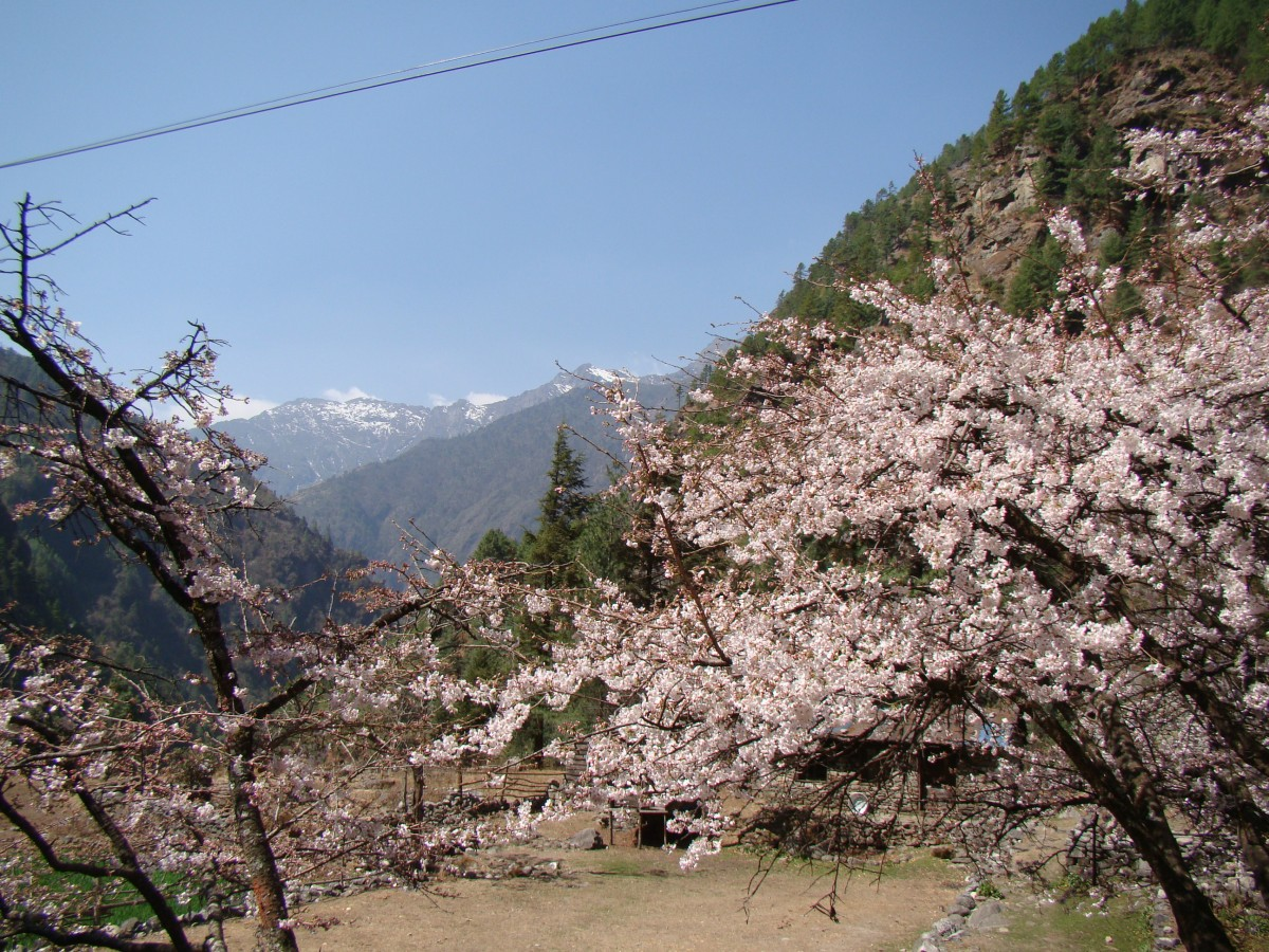 Zdjęcia: Dolina Dudh Koshi, Khumbu, Dolina Dudh Koshi, NEPAL