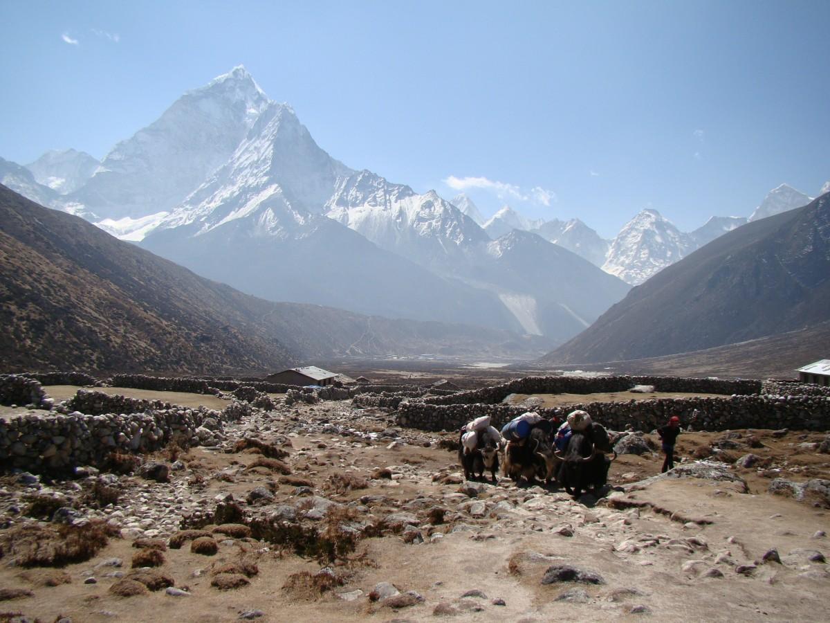 Zdjęcia: Pheriche, Himalaje, W drodze do Pheriche, NEPAL