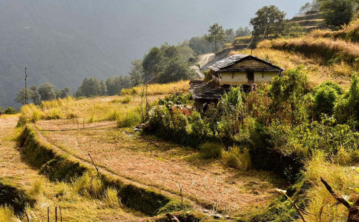 Zdjęcia: Himalaje, Himalje, Gdzieś na trasie do Annapurna Base Camp, NEPAL