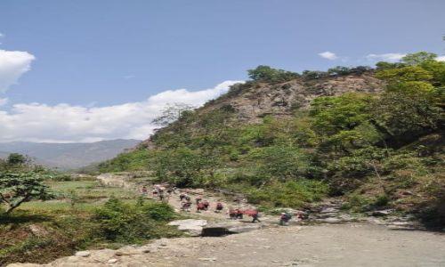 Zdjęcie NEPAL / Annapurna / gdzieś na szlaku / trekking