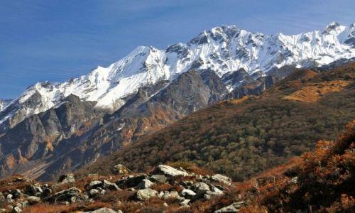 Zdjęcie NEPAL / Langtang / Langtang / Naya Kanga