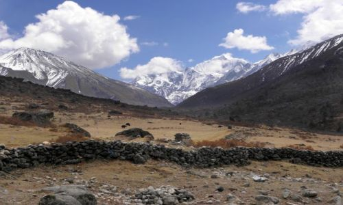 Zdjecie NEPAL / Himalaje / Dolina Langtang / Droga do Kyanjin Gompa