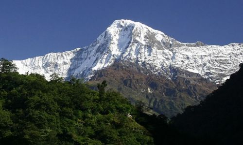 NEPAL / Annapurna / w drodze / Hiunchuli 6434m