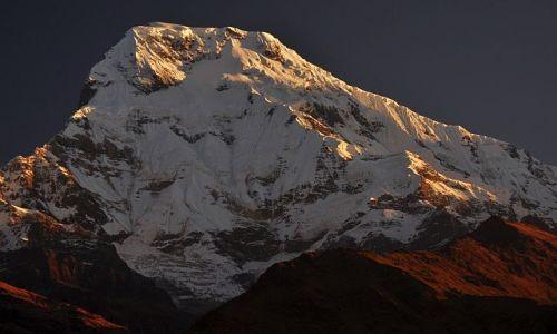 Zdjecie NEPAL / Annapurna  / Tadapani / Annapurna South 7219m