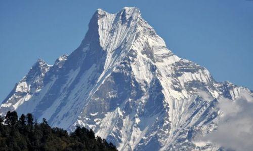 Zdjecie NEPAL / Annapurna  / Tadapani / Machhapuchhre 6