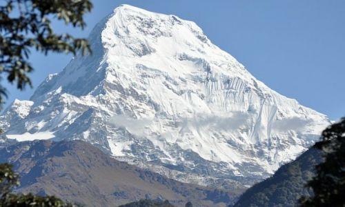 Zdjecie NEPAL / Kaski / Tadapani / Annapurna Pd