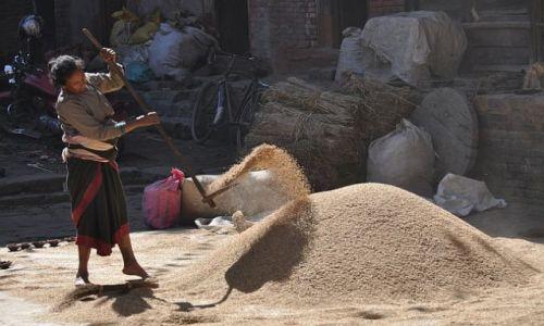 NEPAL / Dolina Kathmandu / Bhaktapur / *