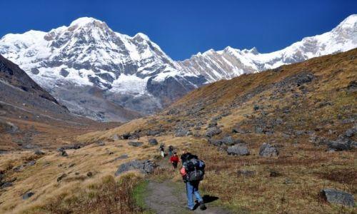 Zdjęcie NEPAL / Annapurna / ABC / podejście pod Annapurna Base Camo