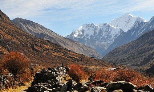 NEPAL / Langtang / Langtang / w dolinie Langtang