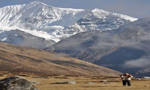 Zdjecie NEPAL / Langtang / Kyanjin Gompa / w cieniu Ganchengpo