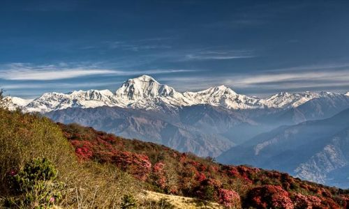 Zdjecie NEPAL / Annapurna Conservation Area / Poon Hill / Dhaulagiri z Po