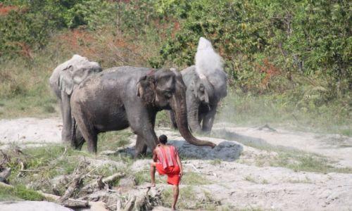 Zdjęcie NEPAL / - / Chitwan National park / Prysznic
