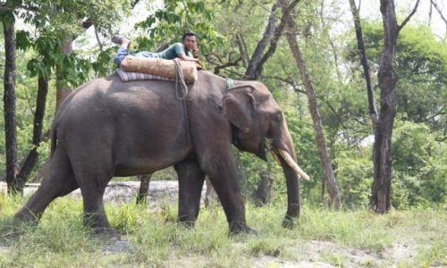 Zdjęcie NEPAL / - / Chitwan National park / Taxi...